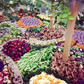 全国各地を回って、まるでアート作品のような美しいお料理で多くの人を魅了したきた堀田さん。色とりどりの食材が集まり、瑞々しく生命感あふれた風景を作り上げている様に感動します。「食べることって、地球の恵みをいただいていることなんだ」と、そのありがたさを改めて実感します。