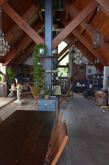 高い天井に三角屋根がかわいい店内。家具は購入することもできるようです。