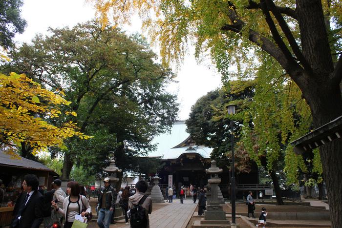 *安産祈願*どこにお願いする?東京エリアでおすすめの寺社10選