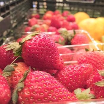 旬の自然栽培フルーツを使用されているため、中身は季節によって変わります。それも通うにあたっての楽しみのひとつですね☆フルーツは旅する八百屋「青果ミコト屋」さんのもの。