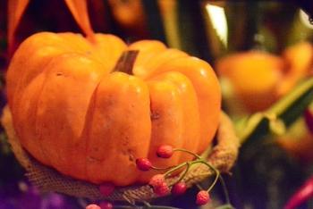 秋のイベントと言えばやっぱり「ハロウィン」。かぼちゃは季節の野菜でもありますし、ハロウィン気分を味わえるイベント感たっぷりの野菜です。そんなかぼちゃを使って、普段の食卓はもちろん、パーティーなどでも見た目にもおしゃれで食卓を華やかにしてくれる料理はいかがでしょうか。