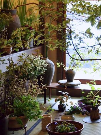 趣のある篭や木の器にしつらえられた草花。季節の草花がところ狭しと溢れる店内では、きっとお気に入りのひと鉢が見つかるはず。