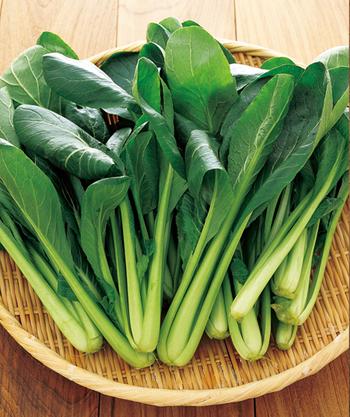 なんとほうれん草よりもビタミンAやカルシウムが多いとされる小松菜も、アレンジしやすい食材♪ 見た目にも美しい緑が食欲をそそります。
