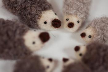 フェルトでできたハリネズミのぬいぐるみ。ふわふわでちいさなハリネズミたちに心もほっこりと癒されます。