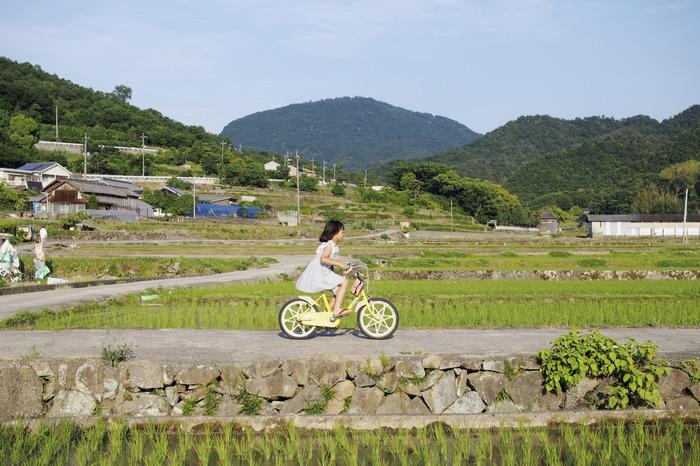 写真:小豆島カメラ(三村さん)