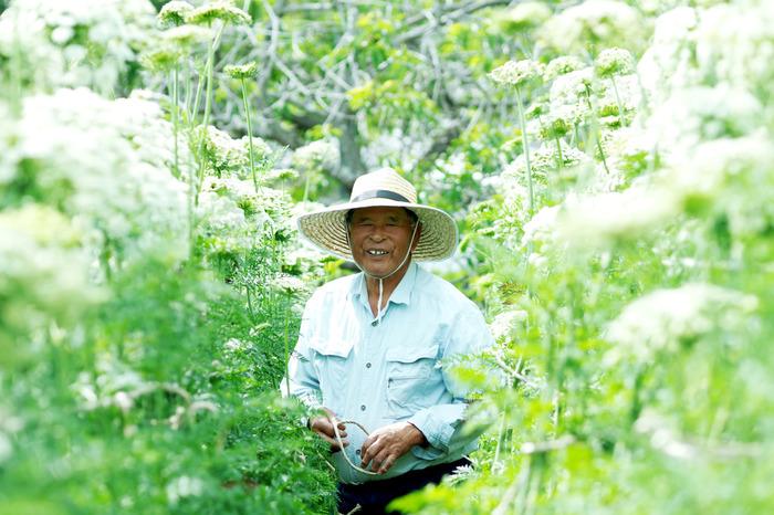 写真:小豆島カメラ(牧浦さん)