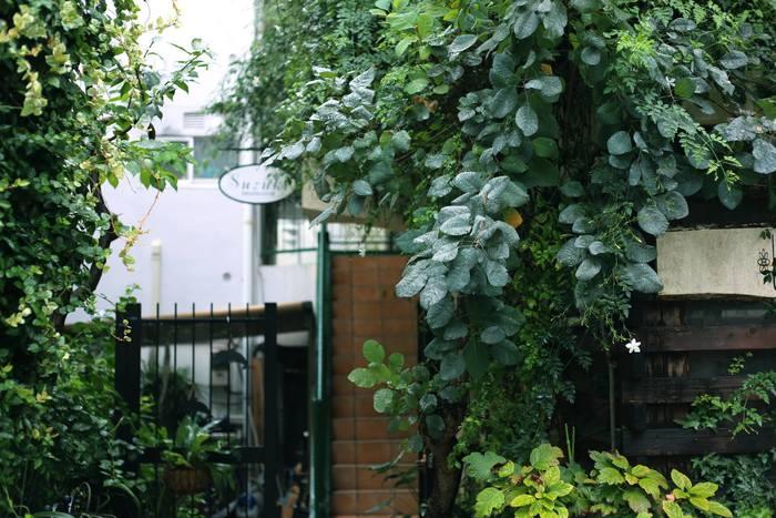 表参道とキャットストリートから少し入ったエリアに佇む、緑が生い茂るレトロなマンション。階段を4Fまで上がったら、すぐ左手にある一室が「HOEK」です。