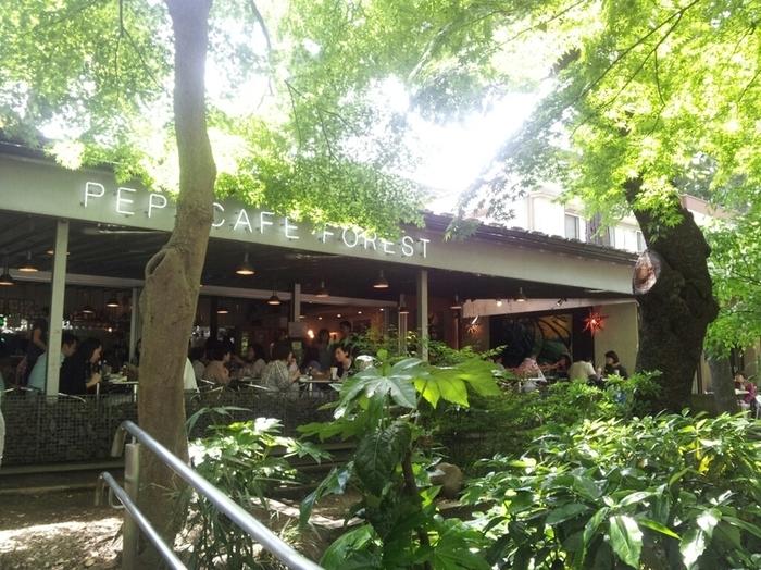 井の頭公園内には疲れた体を休めることができるおしゃれなカフェがあります。ここは麻子が打ち合わせをするときに使う場所として登場しています。