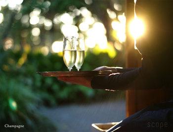 """宙吹きで作るグラスは、ガラスの表面が""""揺らいで""""いるのが特徴の一つ。この柔らかな表情こそが、Barシリーズの味なんです。凛とした佇まいなのに、なぜかほっと安らぐ気持ちになるのは、この揺らぎのおかげなのでしょう。大切な人と乾杯するための特別なシャンパンには、きっとこんなグラスが似合いますよね。"""