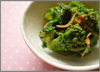 常備菜にしたい菜の花の中華和え。ピリ辛味でご飯がすすみそうです。