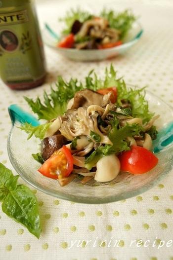 画像は「きのこのマリネ」にフリルレタスをプラスしてサラダ仕立てにしています。 マリネ単体では、冷蔵庫で1週間ほどもつそうですので、アレンジ用の常備菜としてもおすすめ。