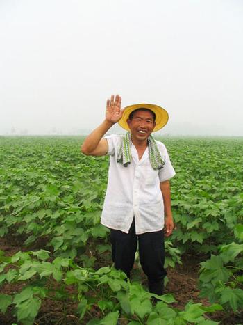 中国・山東省にある契約農家の畑は、かつて一度も農薬・肥料を使ったことのない大地で、作業はすべて手作業で行われています。通常のオーガニックコットンは、3年以上無農薬・無化学肥料で栽培した農地で栽培されますが、益久染織研究所の畑では、畑をはじめてから100年間、これまで一度も農薬や肥料を使ったことがありません。
