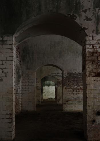 ちょっと怖い気もしますが、島内にはこういった廃墟が点在しています。