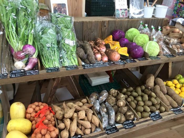 ヨーロッパのマルシェのような、おしゃれな販売スタイルです。なぜかスーパーに売られている野菜たちよりも、生き生きとして見えるから不思議ですね。