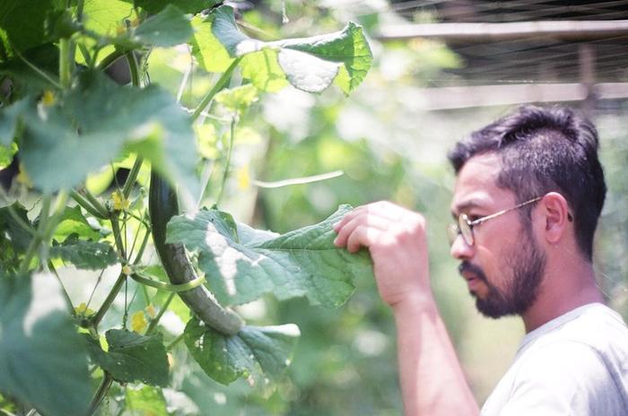 提携している農家さんは北海道から奄美大島まで100軒ほど。生産者と直接会って言葉を交わし、自分たちの五感で吟味した確かな野菜だけを厳選しています。