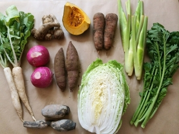 野菜そのものの味をいかしたオリジナルレシピや、上手な保存方法なども添えられて一緒に届きます。これなら調理したことのないお野菜にもチャレンジしやすいですよね♪