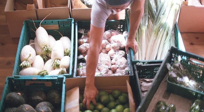 ミコト屋セレクトの旬のおいしい野菜・果物を自宅にお届けしてくれる、野菜の宅配便もやっています。天候や畑の状況により内容は変わることも。どんな野菜が届くか、毎回わくわくしますね。