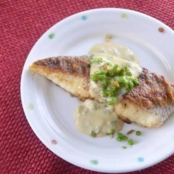 たらの芽は料理のソースにも大活躍。鮮やかなグリーンが見た目にも美しく、春の食卓にぴったりの一品です。たらの芽の苦みに豆乳・味噌のコクがマッチしたソースは、お肉やお魚の美味しさを一層引き立たせてくれます。