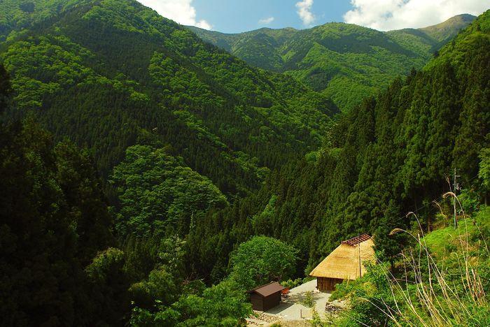落合集落内の深い谷間にひっそりと佇む一軒宿が、遊居です。