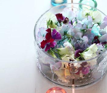 花びらだけを集めてボウルを満たせば、生けた花とはまた違う表情を見せてくれます。陽の光に少し透けた花びらが本当に綺麗!