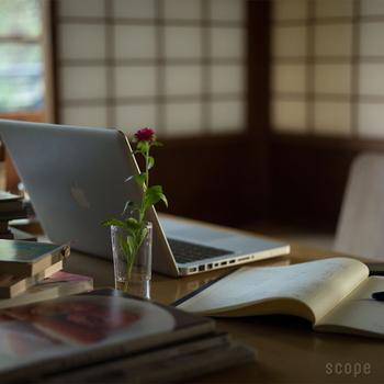 テーブルやデスクに、一輪挿しとして控えめに飾るにはうってつけのサイズが100mmです。日常使いにピッタリなので、活躍の機会が一番多そう。