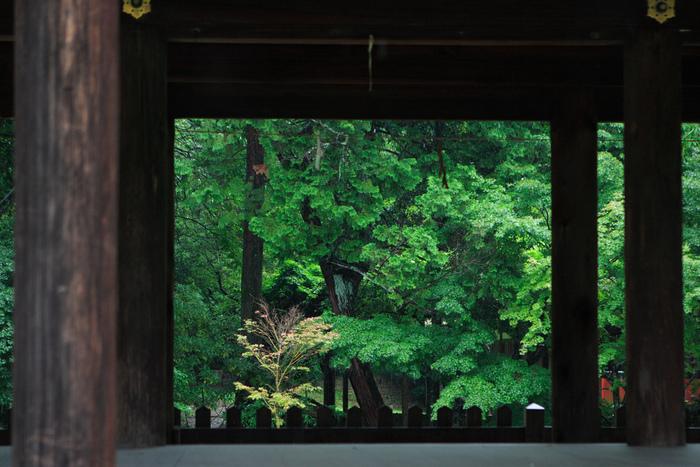 【二の鳥居そばに建つ「御所舎(外幣殿)」。一幅の画のような眺め。桜の季節でなくても、季節折々に楽しめる神社です。】
