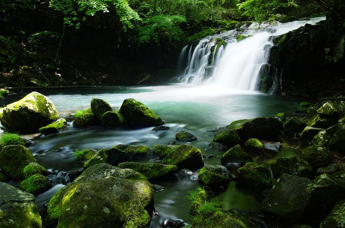 5mほどの高さの小さな滝ですが、豊かな水量と見事な渓流で目を楽しませてくれます。緑が萌える新緑の季節は、苔生す岩々も美しいですね。