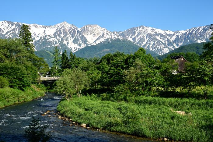 北アルプスの谷間に位置する白馬村。古くからウィンタースポーツが盛んで、1998年には長野オリンピックの開催地ともなりました。夏場の避暑地としても人気で、短い高原の夏には様々な高原植物が賑やかに咲き誇ります。