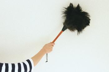 柄の長さも50cmあるので、少し高さのある棚の上などもラクラクきれいにお掃除できます。 やさしく優雅に、そしてキレイにお掃除できる、とっておきのアイテムです。