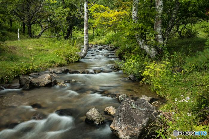 キャンプ場などもある一之瀬園地。平坦な道を、このような小川や野原を眺めながら歩くことができ、まるで絵本の中に迷い込んだかのような気分に!四季折々の大自然を思う存分楽しんでみましょう。