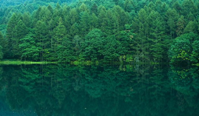 東山魁夷の名画「緑響く」のモチーフになったことや、CMの舞台となったことで有名な御射鹿池。周囲の木々が水面に映り込み、あたりは緑色の静寂に包まれています。