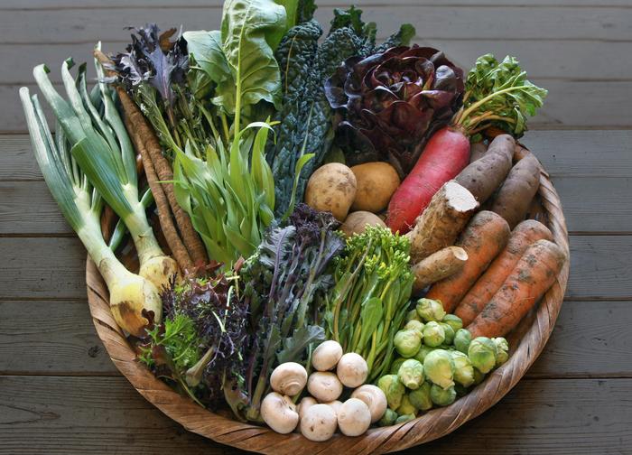 「坂ノ途中」のお野菜は、通信販売でも買うことができます。ボリュームも選べるので、ちょっと試したい人でも大丈夫。自宅で気軽にオーガニック野菜を楽しむことができます。