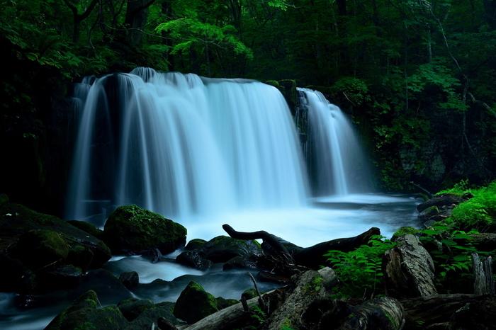豊かな水量を誇る銚子大滝や流れの激しい阿修羅の流れなど、渓流探索には見どころが盛りだくさんです。