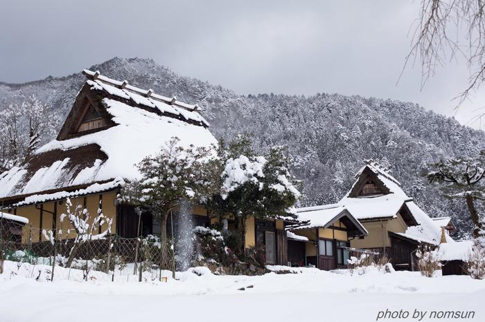 厳しい寒さとなる冬、美山町はすっぽりと雪に覆われます。かやぶきの里は、四季折々で美しい景色を見せてくれますが、一面銀世界となる雪化粧した真冬の美しさは格別です。雪に覆われたかやぶきの里は、日本昔話のイメージそのものです。