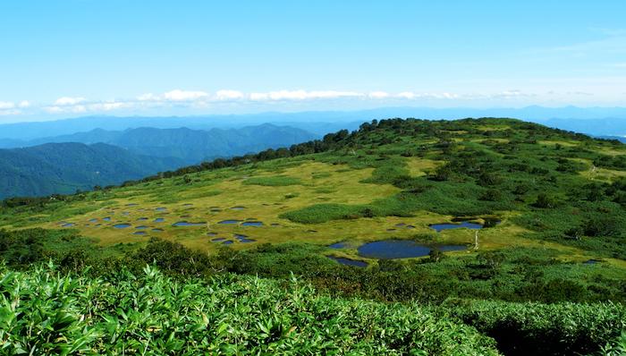 青森県南西部から秋田県にまたがる白神山地。1993年には日本初のユネスコ世界自然遺産にも登録されました。起伏の激しい入り組んだ地形が見事な景観と豊かな生態系を育んできました。