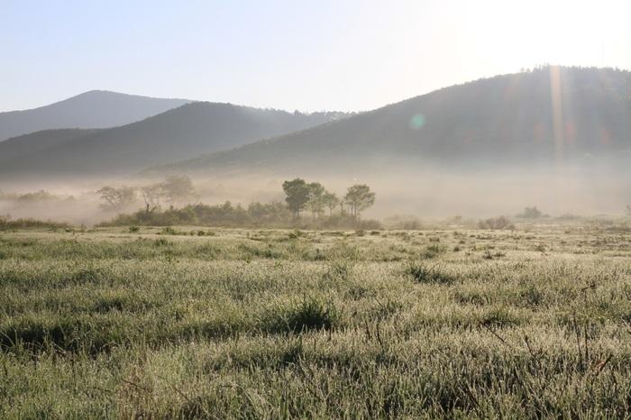行ってみたい場所はありましたか?青森県内には今も手つかずの自然が多く残り、わたしたちに自然の美しさを教えてくれているようですね。ぜひ実際に訪れて、大自然を肌で感じる体験をしてみてください。