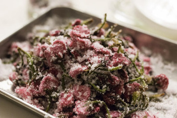 八重桜、塩、お酢で作る桜の塩漬けは、漬けておく時間はかかりますが、一度作れば殺菌効果のある酢と塩を使用しているため、保存がきいて便利。しかもアレンジレシピも豊富なので、ぜひ春の休日にチャレンジしてみてはいかがでしょうか。