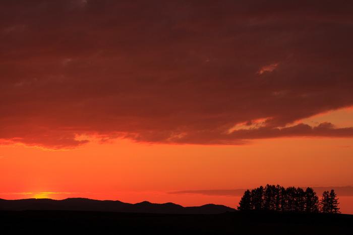 美瑛屈指の景勝地、新栄の丘は夕景が美しいことでも知られています。沈みゆく太陽、夕陽を浴びて赤く染まった空、黒いシルエットとなった樹々や十勝岳連峰が融和した景色は、刻一刻と表情を変えてゆき、瞬きをすることさえ惜しくなるほどの美しさです。