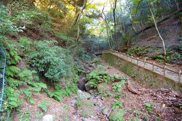 箕面の滝へは、よく整備された滝道があるため、ハイキングを楽しみながら滝へ行くことができます。豊かな森の中に敷かれた滝道は、森林浴スポットとしても人気がある場所です。