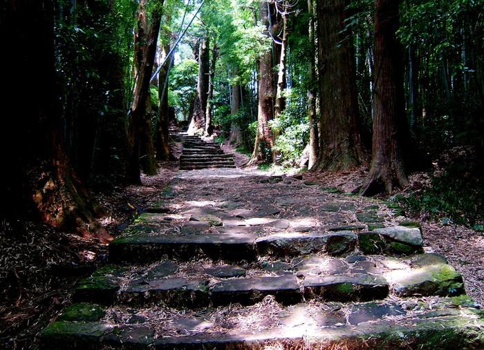 大門坂の象徴ともいえる苔に覆われた石畳の両側には悠久の時間の流れを感じさせる杉の老木がそびえています。静謐な雰囲気が漂う大門坂は、参拝者を日本有数の霊場へといざなう誘導口です。