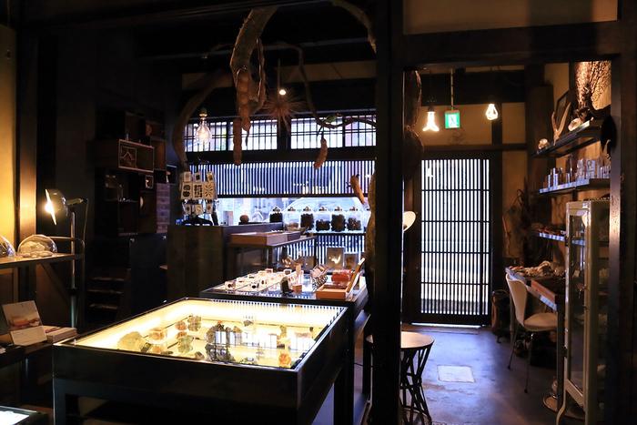 お店は、奥に細長く「うなぎの寝床」と呼ばれる京都ならではの建築様式。1階は自然の標本を展示販売する雑貨店になっています。
