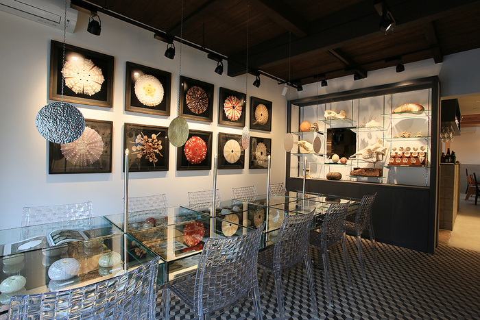 2015年9月にオープンしたカフェは、鉱物標本、植物標本、骨格標本などなど・・・様々な自然の造形物に囲まれてます。まるで博物館のよう。
