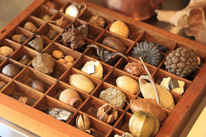 【京都】泊まる・買い物する・美味しいご飯を食べる。ウサギノネドコで「自然の造形美」を体験しませんか