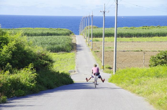 波照間島では、レンタサイクルを使った自転車旅がおすすめ。半日あればぐるりと1周できちゃいます。ざわわ~と歌いたくなるサトウキビ畑を通り抜けたり、自分だけの絶景スポットを見つけたり、おいしいカフェを巡ったり、、、ゆっくり楽しい島旅を。