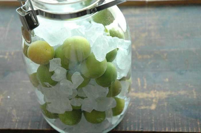 その後、熱湯殺菌した清潔な保存瓶に、梅と氷砂糖を交互に入れていきます。あとは、1日に2~3回混ぜるだけ。
