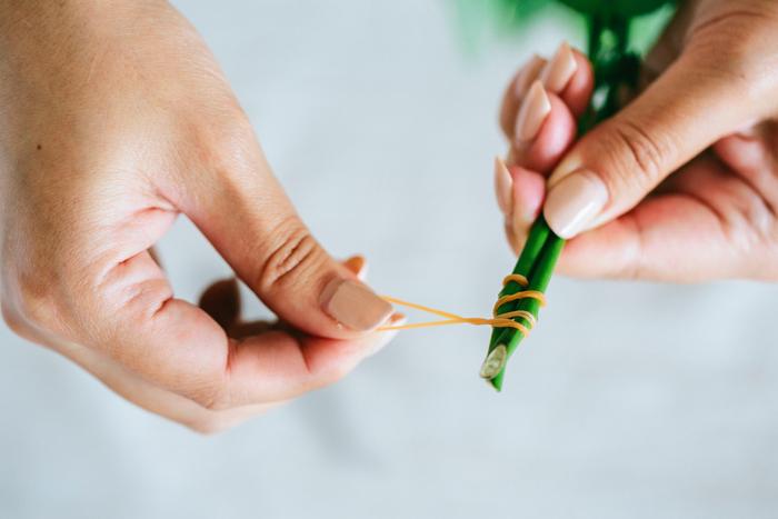 ③ ②で引っ掛けた輪ゴムをぐるぐると茎に巻きつけていきます。