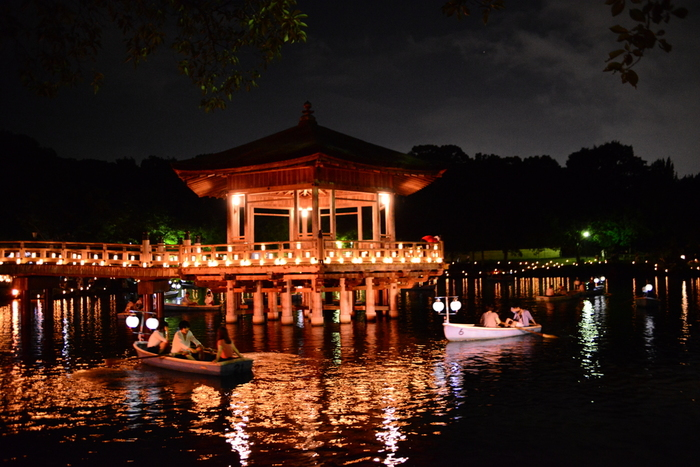 1999年から開催されている「なら燈花会」では、1300年前に都として栄えた古都、奈良市の中心部に無数の燈籠を灯す夏祭りです。