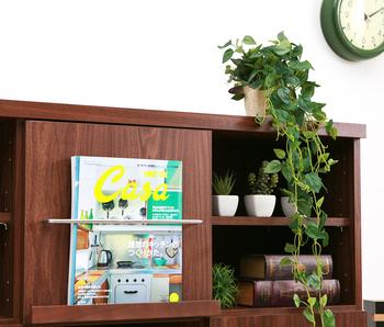 壁掛けタイプも人気。土が入っていないのでとっても軽く、ハンギングにも最適。玄関先や、洗面所などに置いてもよさそうです。