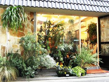 学芸大学から祐天寺に向かう途中の高架下にある「LOCALSTORE」は、2015年12月にオープンしたばかり。観葉植物や多肉植物などをメインに、お洋服やインポートアクセサリー、古着や雑貨なども扱っています。