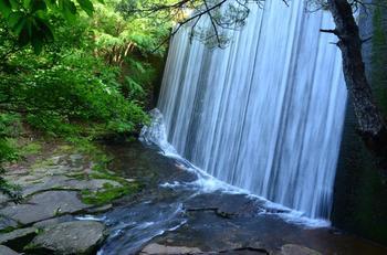 通天湖(つうてんこ)と言われる場所では12.5メートルにもおよぶ水のカーテンのような滝を眺める事が出来るんですよ。季節は1年を通して眺められて、自然が奏でる荘厳な音を感じられる場所ですよ。
